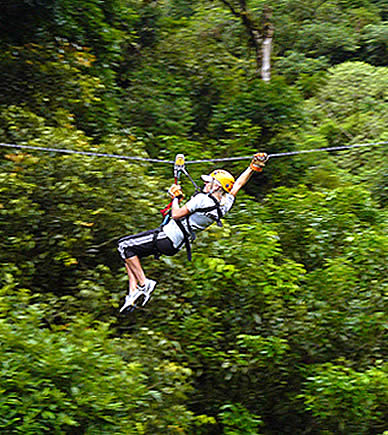 Zip through the Cloud Forestu0027s Canopy & Zip Line Canopy Tour in Panamau0027s Cloud Forest | Boquete Tree Trek ...